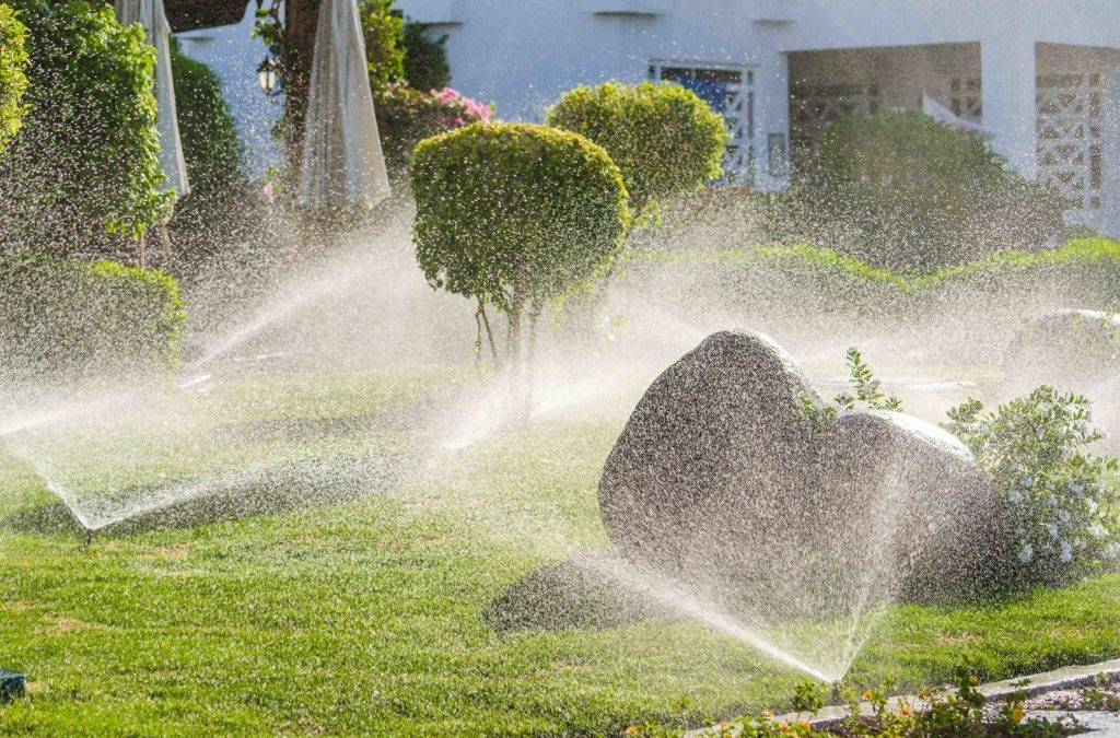 WHY INVEST IN COMMERCIAL LANDSCAPING MAINTENANCE IN DALLAS