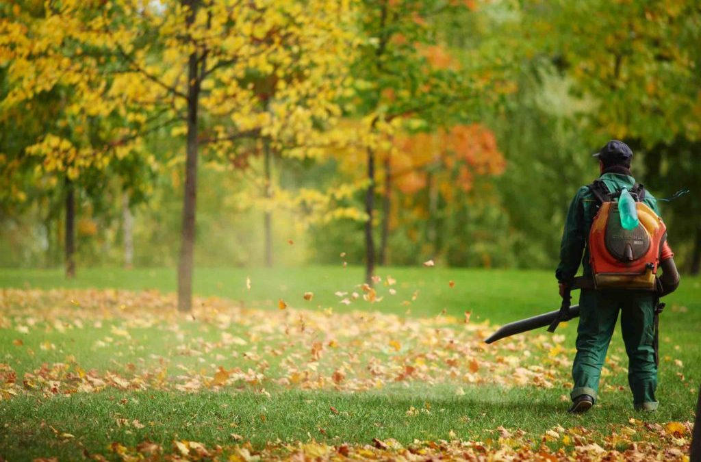 IMPORTANCE OF SEASONAL COMMERCIAL MAINTENANCE SERVICES FOR YOUR LAWN & BUSINESS